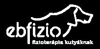 Ebfizio - Kisállat-fizioterápia, hidroterápia, kutya-fitness